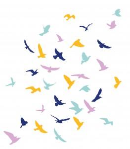 05-Birds